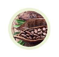 Chocolate Slim - hubnutí - účinky - zkušenosti – funguje