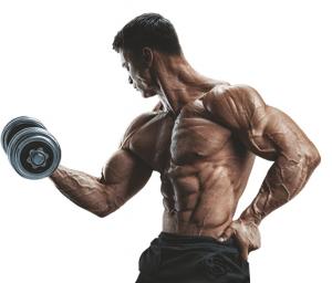 Revo Muscle - recenze - diskuze - forum - výsledky
