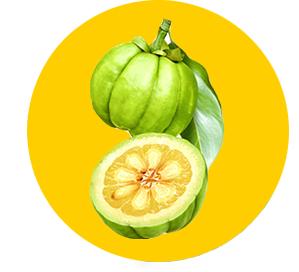 Dietonus – funguje - účinky - složení - zkušenosti